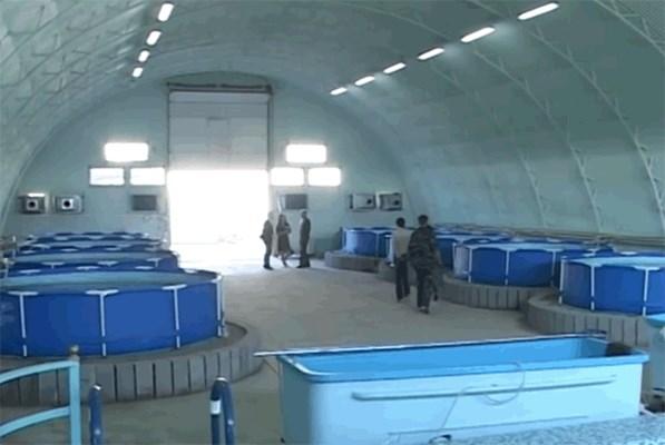 установка закрытого водоснабжения для разведение рыбы