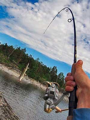 активная рыбалка
