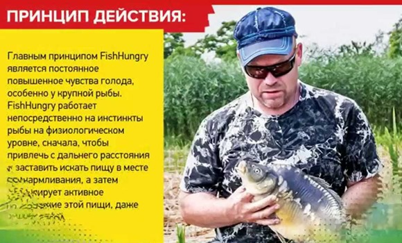 FishHungry активатор клева