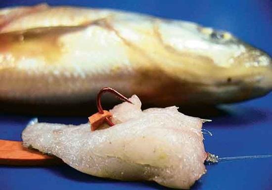кусочки рыбы приманка