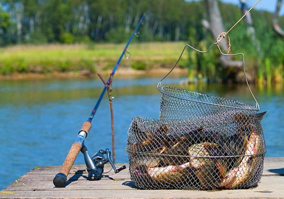 как сохранить улов на рыбалке
