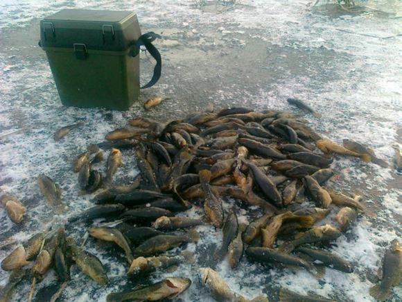 ловля ротана зимой фото