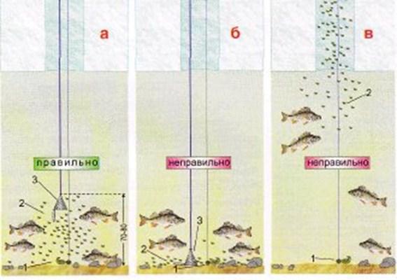 Прикорм для зимней рыбалки своими руками