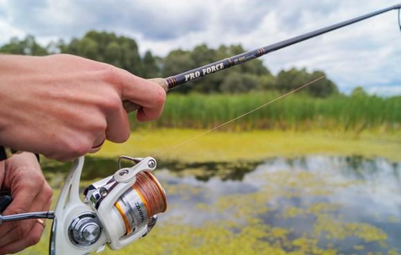 станье автором – заведите свой рыболовный блог