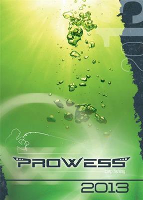 PROWESS 2013 скачать