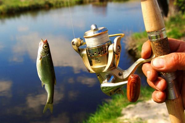 Игры на планшет андроид скачать бесплатно рыбалка планшет