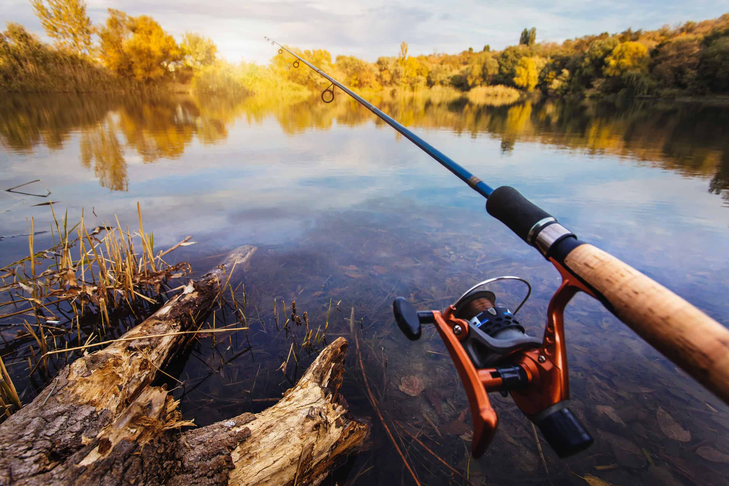 Куда поехать на рыбалку в Калужской области