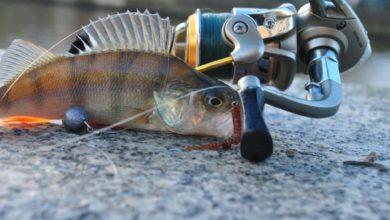 рыбалка на микроджиг